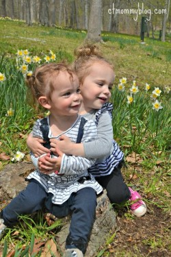 Hubbard Park Daffodils