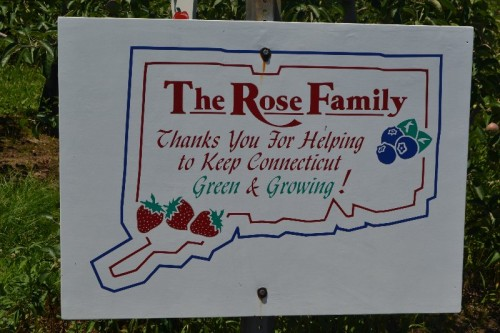 Rose's Berry Farm