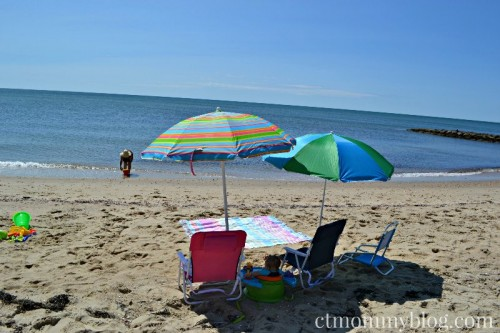 Dennis Port beach