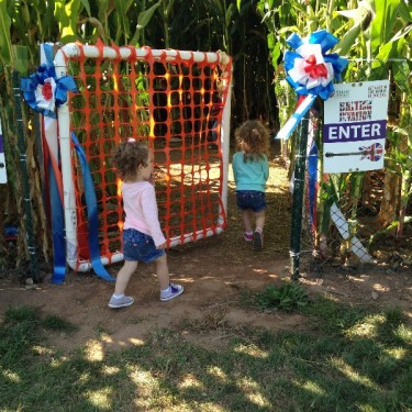 Lyman Orchards British Invasion Corn Maze