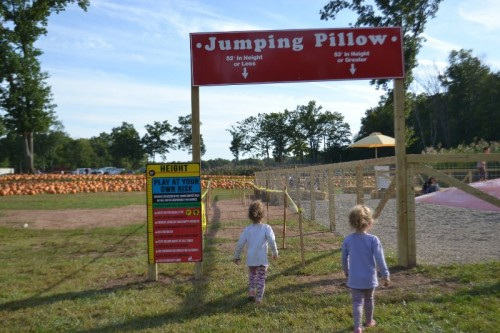 Fair Weather Acres Jumping Pillow
