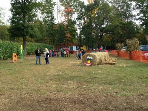 Fall Festival Cromwell, CT