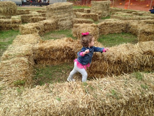 Kid's Hay Maze CT
