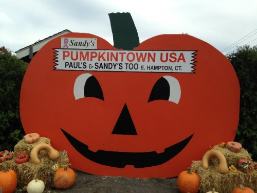 Pumpkintown USA in East Hampton, CT