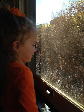 Naugatuck Railroad Pumpkin Train (15)