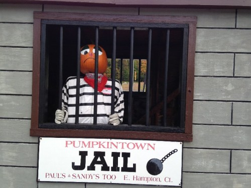 Pumpkintown USA East Hampton CT (14)