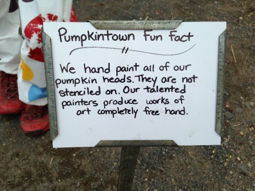 Pumpkintown USA East Hampton CT (15)
