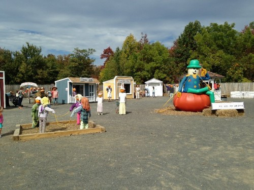 Pumpkintown USA East Hampton CT (42)