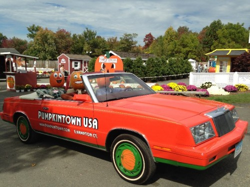 Pumpkintown USA East Hampton CT (43)
