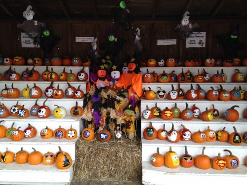 Pumpkintown USA East Hampton CT (50)