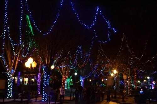 Holiday Lights Lake Compounce