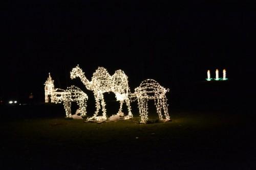 Hubbard Park Silver Lights