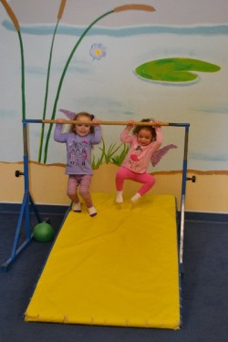 Whippersnapper's Play Gym CT