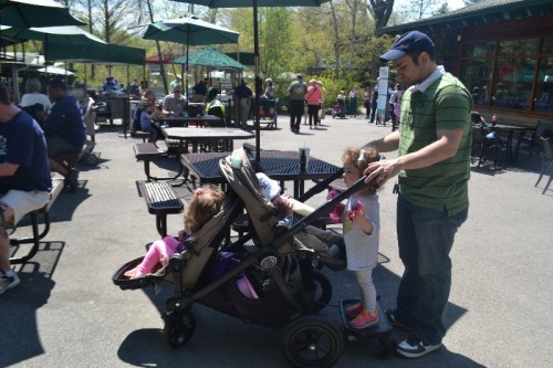 Bronx Zoo Strollers Allowed