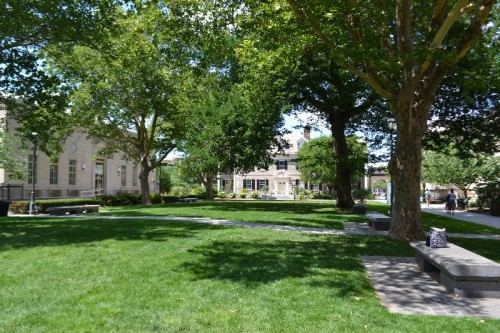Springfield Museums Quadrangle
