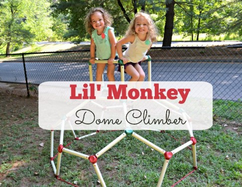 Lil' Monkey Dome Climber