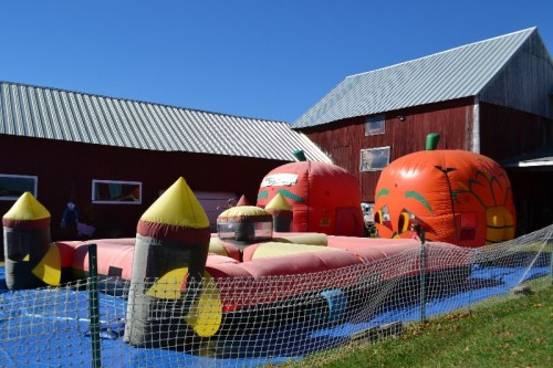 Inflatable Games Minor's Farm
