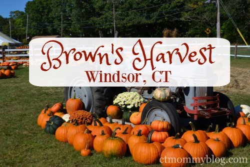 browns-harvest-windsor-ct
