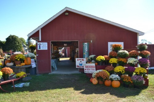 browns-harvest-windsor-ct-161