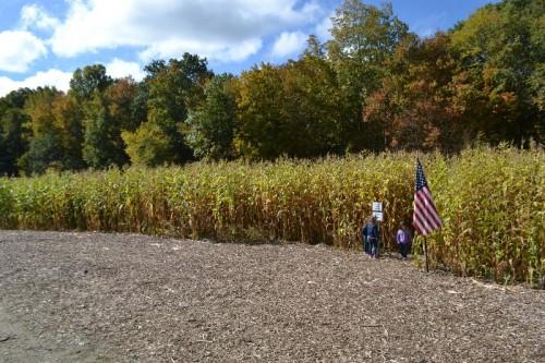 march-farm-corn-maze