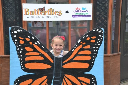 The Children's Museum Butterfly Exhibit