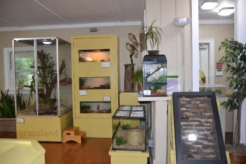 Stamford Nature Center (61)