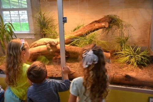 Stamford Nature Center (63)