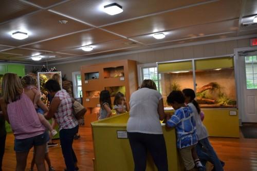Stamford Nature Center (67)