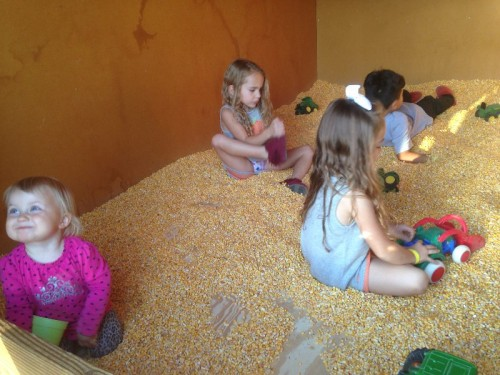 Corn pit Bishop's Orchard
